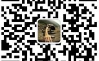 SEO实战视频教程_SEO培训内部课程「付费教程」